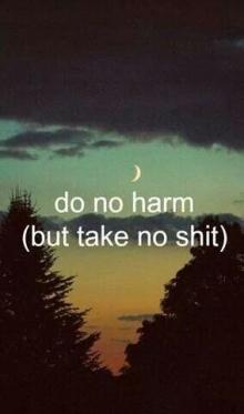 97366-do-no-harm-but-take-no-shit
